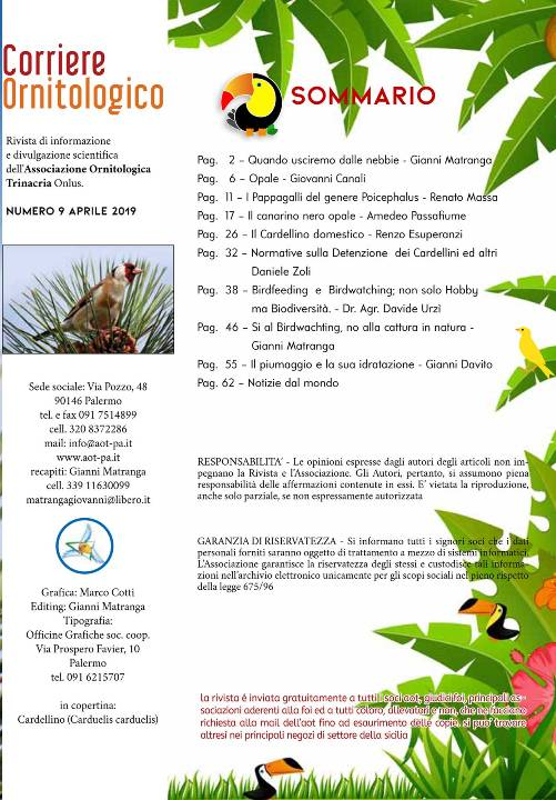 Calendario Mostre Ornitologiche 2019 Sicilia.Il Notiziario Ornitologico